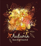 Paint splashes and autumnal leaves Royalty Free Stock Images