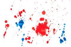 Paint splat. Isolated on white Stock Image