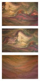 Paint Texture Trio Royalty Free Stock Photography