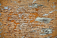 Paint on Wood Royalty Free Stock Images