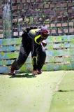 Paintball betriebsbereit Stockbild