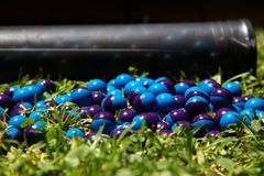 Paintballs sur l'herbe Photo libre de droits