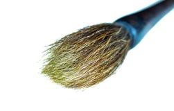 paintbrush Royaltyfri Foto