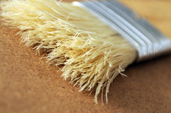 Paintbrush bristles Royalty Free Stock Photos