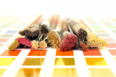 Paintbrush and color swatch Royalty Free Stock Image