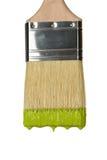 Paintbrush Dripping Green Paint Stock Photos