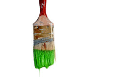 Paintbrush dripping green paint on whit Royalty Free Stock Images