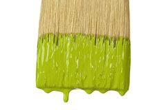 Paintbrush Dripping Paint Stock Images