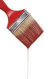 A paintbrush dripping with red paint Royalty Free Stock Image
