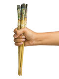 Paintbrush in hand Stock Image