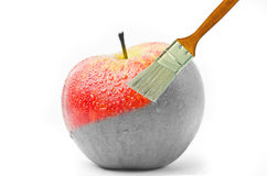 Paintbrush painting a fresh red wet apple which is partly black and white and partly colored Stock Photos