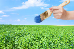 Paintbrush paints blue sky over green field Royalty Free Stock Photo
