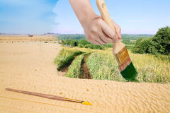 Paintbrush paints green countryside in sand desert Stock Image