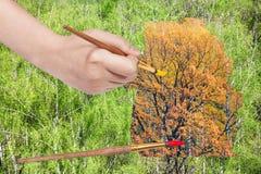 Paintbrush paints yellow autumn oak in green woods Stock Image