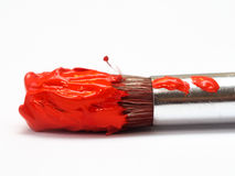 Paintbrush stock images