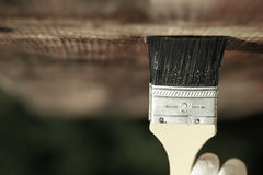 Paintbrush sliding over wooden ceiling surface Stock Photos