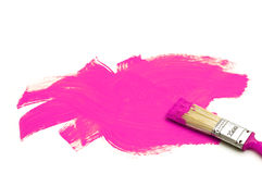 Paintbrush and violet color Stock Photography