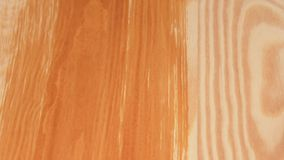 Paintbrush in the woman's hand. Smooth wooden board. Paintbrush in the woman's hand varnishing from bottom to the top stock video