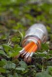 Paintbrushes в банке на предпосылке травы Стоковое Фото