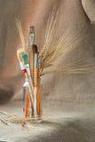 Paintbrushes с ушами хлопьев Стоковые Фото