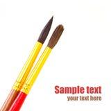 Paintbrushes Obrazy Royalty Free