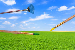 Paintbrushes on green lucerne field under blue sky Royalty Free Stock Photography