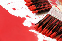 Paintbrushes and the red colour Royalty Free Stock Photos