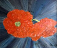 Painted abstract red poppies flowers with blue background vector illustration