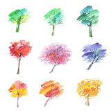 Painted abstract tree symbol. Stock Image