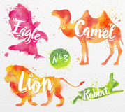 Painted animals camel Stock Image