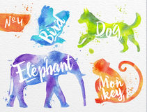 Painted animals deer. Silhouettes of animal bird, dog, monkey, elephant drawing color paint on background of  watercolor paper Royalty Free Stock Images