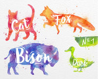 Painted animals deer. Silhouettes of animal cat, fox, bison, duck drawing color paint on background of  watercolor paper Stock Photos