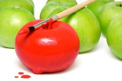 The painted apple 2. The apple painted by a red paint among unpainted apples Stock Photos