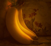 Old Masters Bananas on Floral Background Stock Photos
