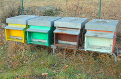 Painted beehives in the field Royalty Free Stock Photo