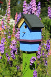 Painted Birdhouse. Brightly painted birdhouse among beautiful larkspur flowers Royalty Free Stock Image