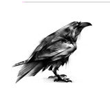 Painted black crow on a white background Royalty Free Stock Photo