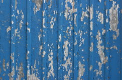 Painted blue flaked corrugated metal sheet. Painted blue flaked corrugated galvanized steel sheet Royalty Free Stock Images