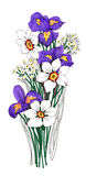 Painted bouquet of narcissuses and irises flowers on white background Royalty Free Stock Image