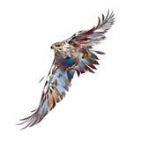 Painted bright attacking bird hawk. Art bright attacking bird hawk Stock Photos