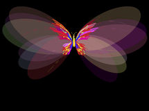 Painted butterfly in different colors Stock Photography
