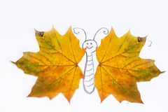 Painted butterfly  with wings  from autumn leafs Stock Image