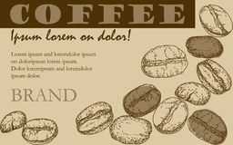 Painted coffee beans, sketch, vector drawing, perfect ingredient, choice grain Royalty Free Stock Photos