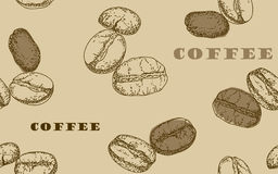 Painted coffee beans, sketch, vector drawing, perfect ingredient, choice grain Royalty Free Stock Photo