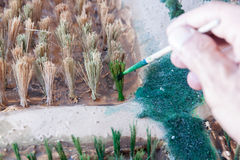 Painted color the make a planting rice model Royalty Free Stock Photography