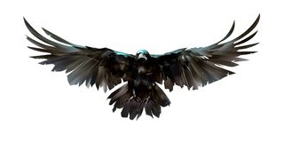 Painted coloreó cuervos del pájaro en frente ilustración del vector