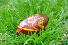 Painted Colorful Easter Egg Royalty Free Stock Photos