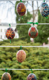 Painted colorful easter eggs. On the string Stock Photo