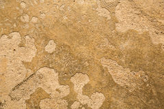 Painted concrete background Stock Photography