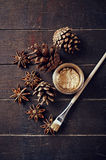 Painted cones and star anise for Christmas Royalty Free Stock Photos